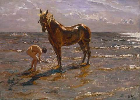 41_00259705~baden-des-pferdes