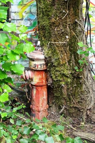 baumhydrant
