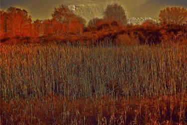 Rusty Landscape Pavel Rehurek