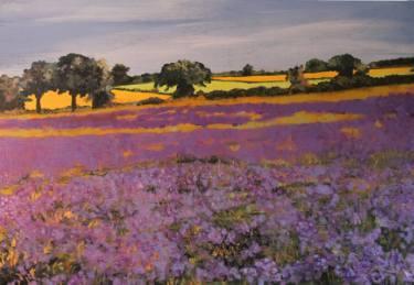 Lavender Fields Forever Ken Vrana