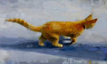 c zenzero gatto jonathan hargreaves