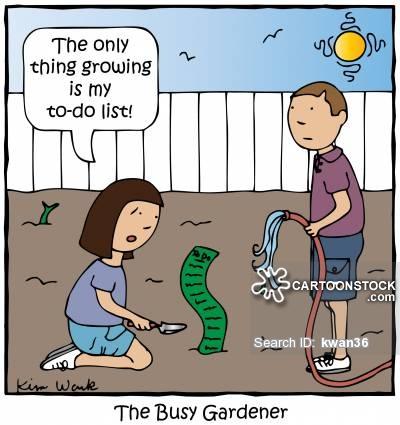 The Busy Gardener