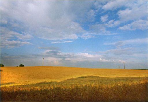 himmel_und_erde_weizenfelder_2
