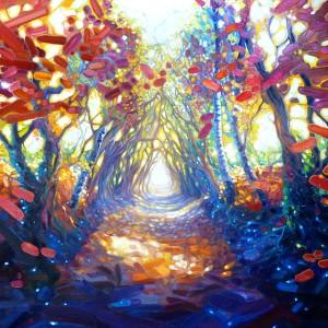 woodland-path-to-somewhere-wonderful-gb