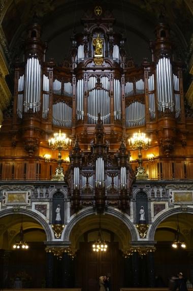 organ-p