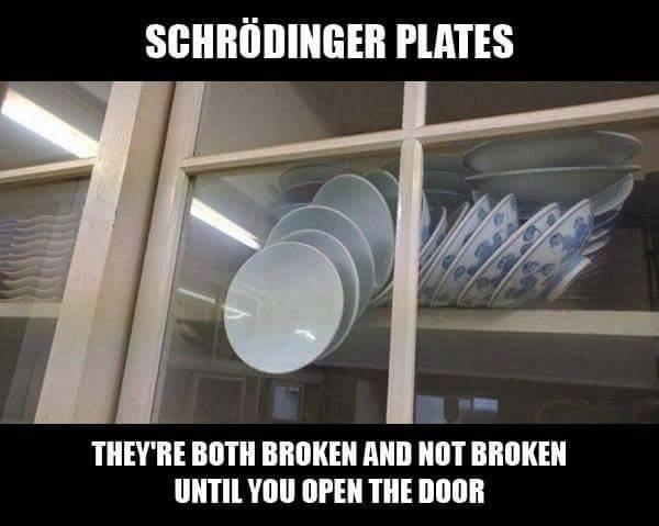 schrödingers plates