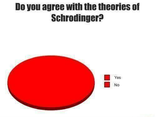 schrödinger theories